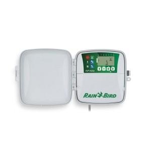 Programmateur d'extérieur RAIN BIRD ESP-RZX